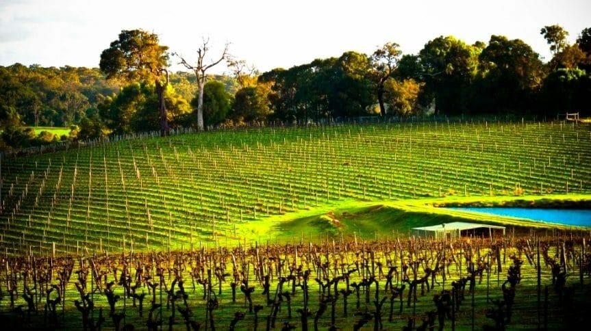 Margaret River Wine Region - Western Australian Wines