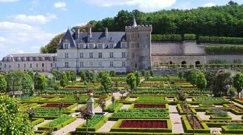 Top 3 Loire Valley Wines - The Garden of France