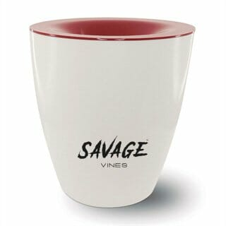 Wine Spittoon | Essential items for a wine tasting event