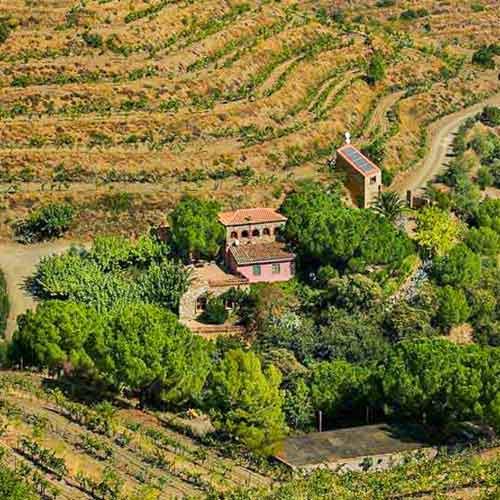 wine tourism priorat | Clos Mogador
