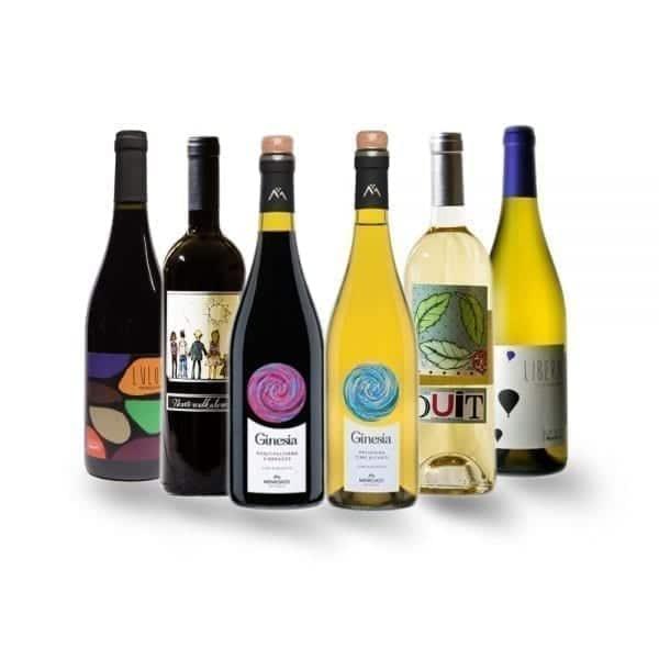 Organic Italian Wine | Mixed Case