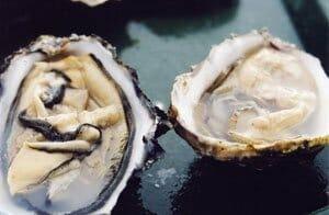 Albarino wine | oysters | best wine pairings