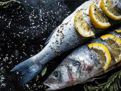 albarino wine | sea bass | best wine pairings