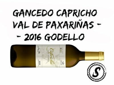 SUBSCRIPTION WINES | GODELLO WHITE WINE | GANCEDO CAPRICHO