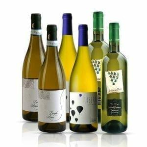 Italian White Wine Selection