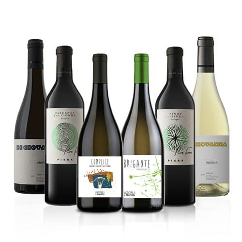 Italian Organic Wine Selection