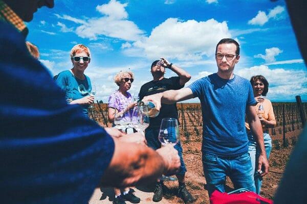Weingut Feth Vineyard Tour