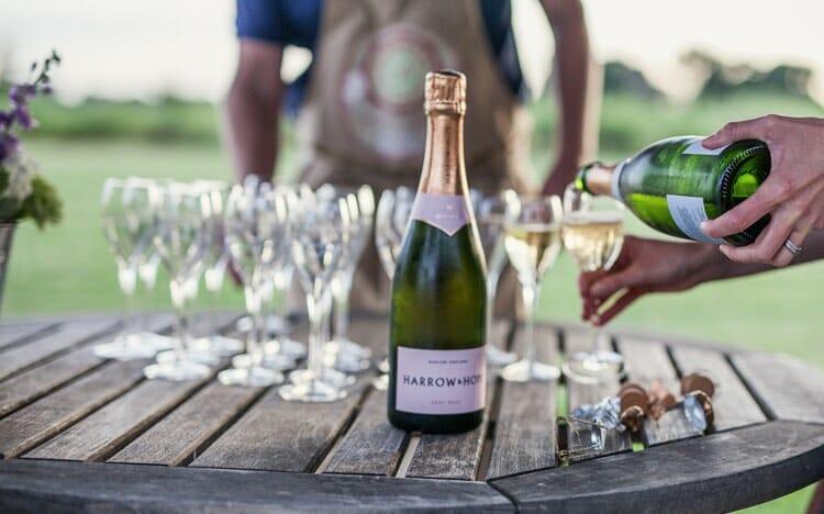 A snapshot of the Harrow & Hope wine tasting