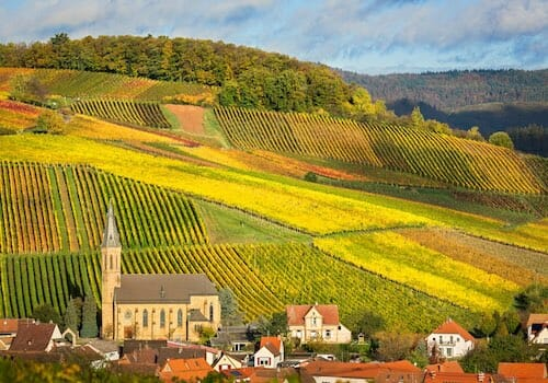Palatinate (Pfalz) - German Wine Region