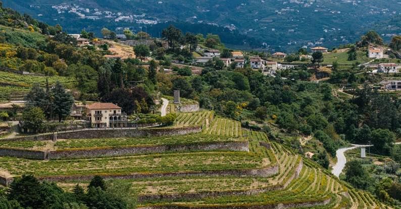 The 'green' Vinho Verde Region